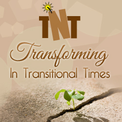 Transforming in Transitional Times (TNT Package)