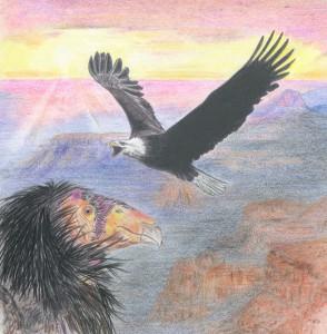 Session Four - The East - Eagle and Condor